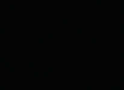 Le granit BLACK HEBENUM